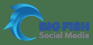 Big Fish Social Media